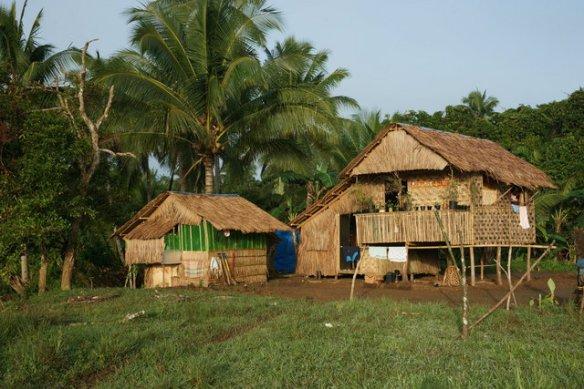 Small organic farm
